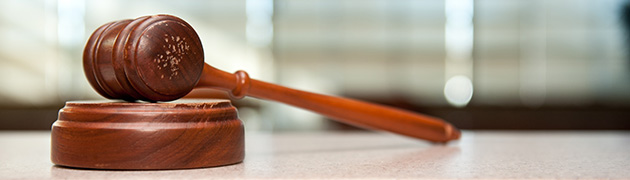 Banner image of a gavel