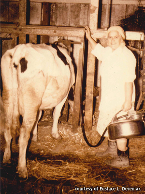Eustace Dereniak's Mother with Cow