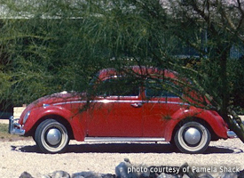 Roland and Pam Shack's 1964 VW Beetle
